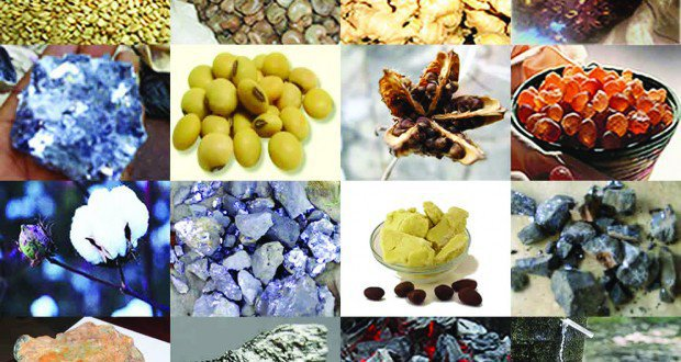 NEPC laments over loss of money in export business
