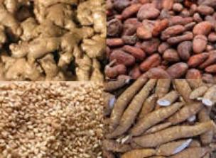 Expert calls for improved post-harvest handling technologies