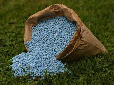 Nigeria-Morocco fertilizer deal to save Nigeria $200m, N60bn in subsidy – Buhari