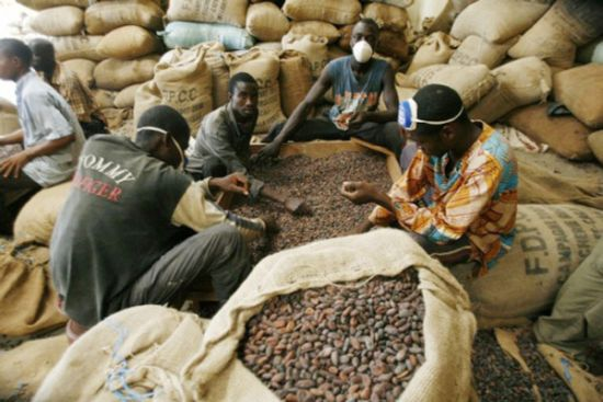 Nigeria rides on agricultural produce, solid minerals to drive non-oil export