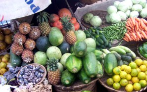 agric-products