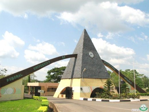 FUNAAB offers govt, investors local rice, poultry as import substitutes