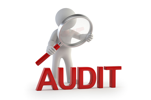 Image result for IT AUDITOR