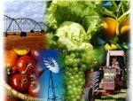 agric-collage
