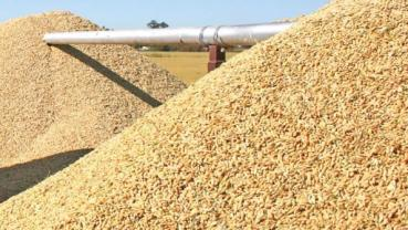 Cross River sees N10bn investment in rice production