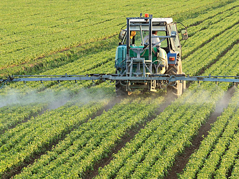 Delta Govt. registers 30,000 farmers for CBN Anchor Borrowers Programme
