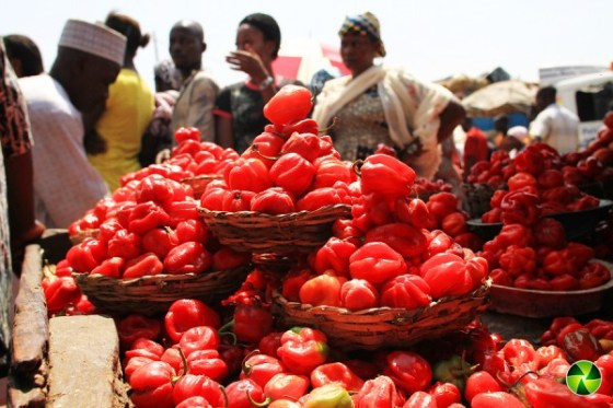 Study shows higher food prices in Lagos