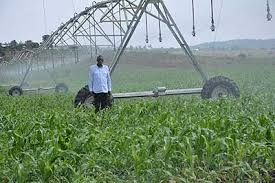 Farmers urged to adopt mechanisation to boost productivity