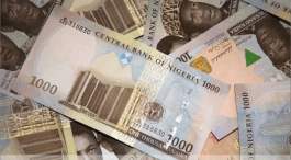 Naira in free fall closes at N310.43k as CBN insists on stability