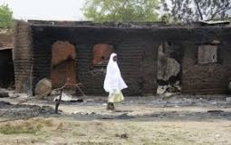 Boko Haram is setback to Western education in Borno