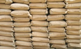 Cement makers not utilizing assets to generate sales