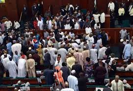 House of Reps in noisy session over budget padding