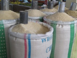 SON develops new standards for rice harvesting, processing