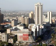 Africa's biggest challenge is viability - Experts