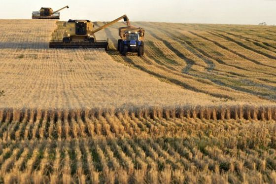 Nigeria plans $3.2 bn capitalization for farming lender