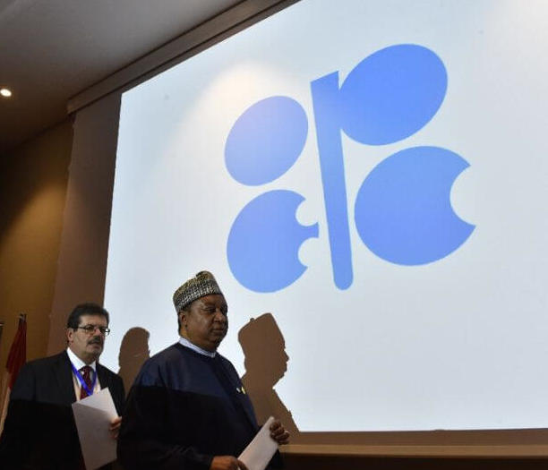 Oil halts 4-day rally as OPEC ministers gather