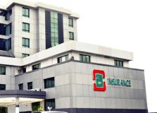 Standard Alliance embarks to embark on  share reconstruction
