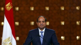 Egypt to top $10billion FDI target this year, Minister says