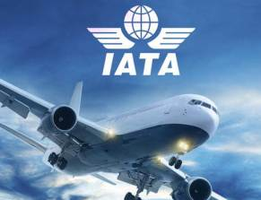 Global airlines records stable profit level in Q4-IATA