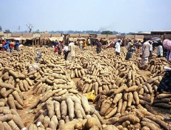 Nigerian firms explore export market to make dollar gains