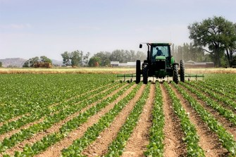 Chinese government offers Nigeria $4.5bn Agric loan