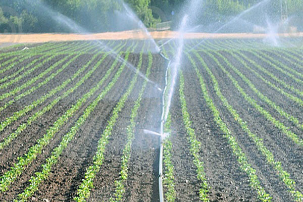 Agriculturist wants farmers to practice irrigation to improve yields