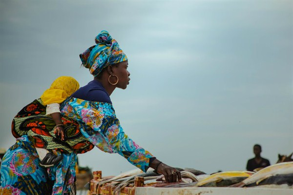 Armed with apps and crops, women lead battle to save Senegal's shrinking farmland
