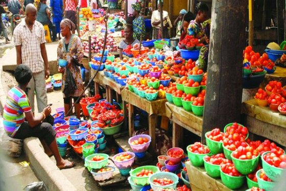 How to Start a Supermarket in Nigeria; Everything you Need to Know