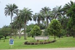 Agripreneurs in Africa gather for first-ever youth agribusiness forum