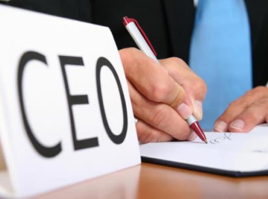 CEOs advocate collaboration to drive SDGs