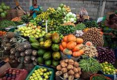 Dry season farming: FG spends over N9.5bn on inputs