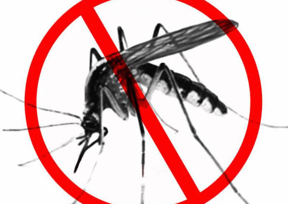 Reps urges FG to implement National Malaria treatment policy