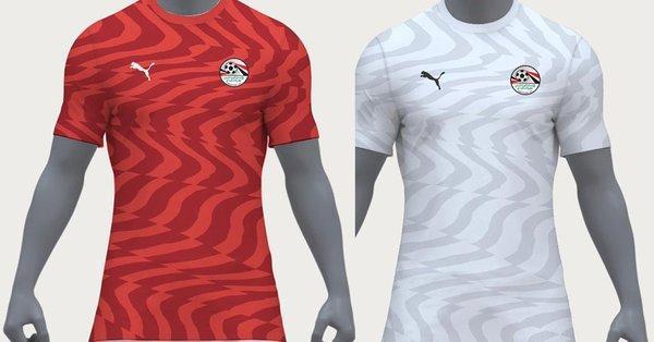 28603645cb6 Egypt dump Adidas, sign new kit deal with Puma - Businessday NG