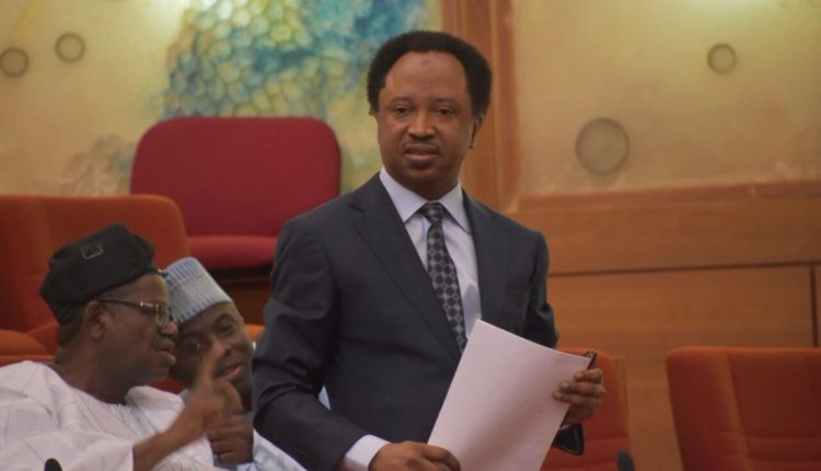 INEC replies Shehu Sani over hiring of El-Rufai lawyer