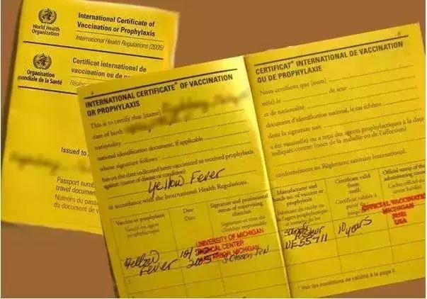 Nigeria's Yellow card website leaks thousands of data