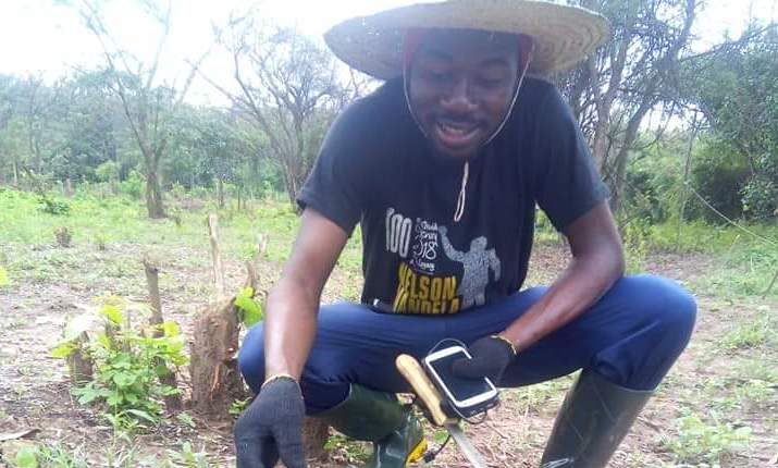 'Youths will find agriculture attractive with technology'