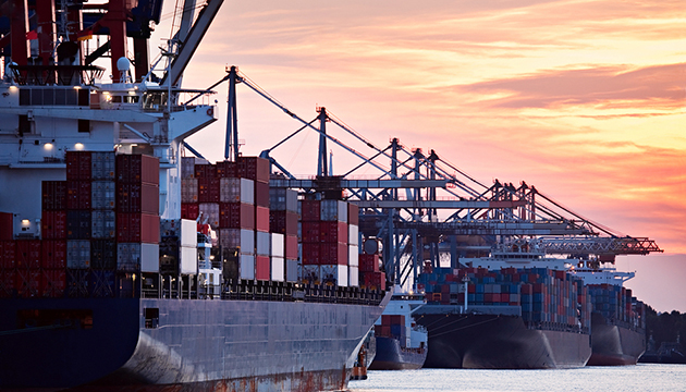 Import control through importers' registry: A solution to import binge
