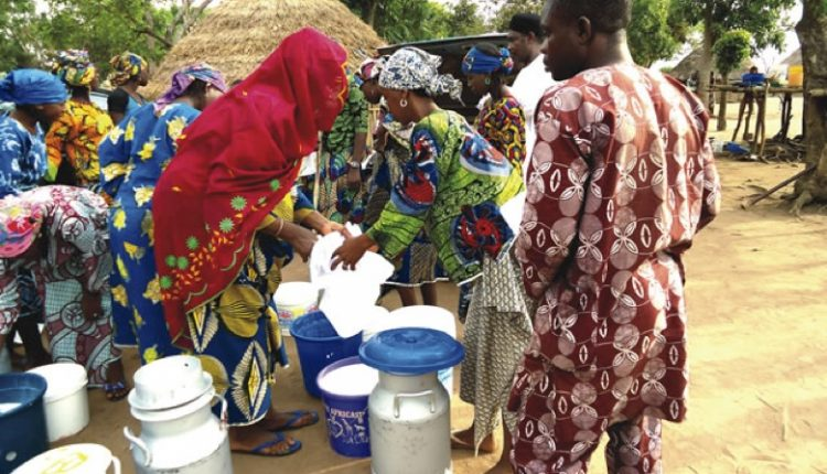 Women milk makers at a milk collection centre at Fasola community . Picture taken in 2017