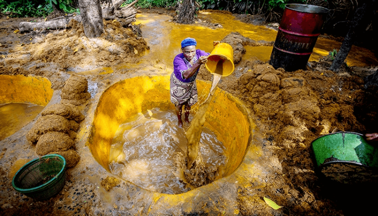 New RSPO standard for smallholders signals hope for Nigerian palm oil producers