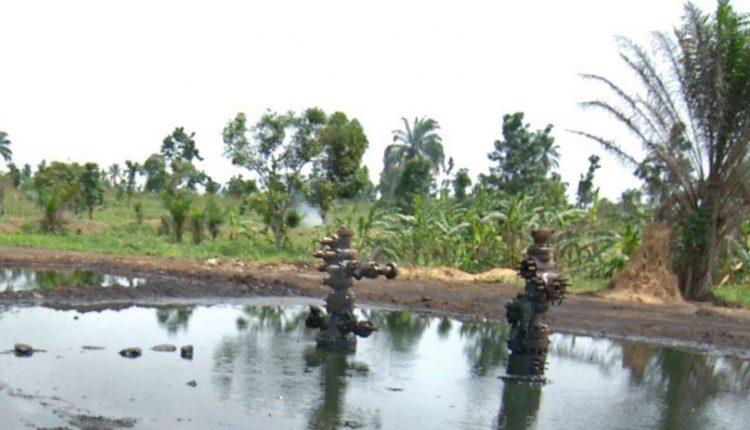 Presidency lists progress on Ogoni Clean Up