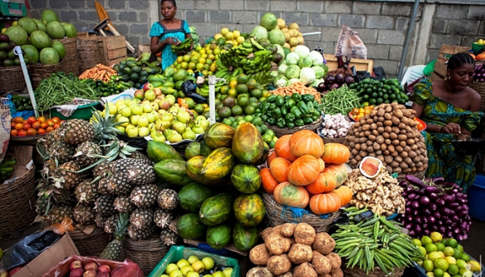 The Africa Farmers' Stories - The Irony of Food shortage amidst Food Wastage