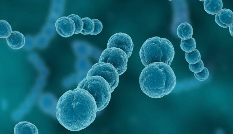 UBA aids Nasarawa with N28.5m to fight coronavirus