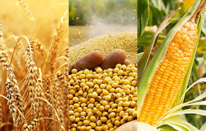 Understanding how to trade agriculture commodities like stocks using ComX