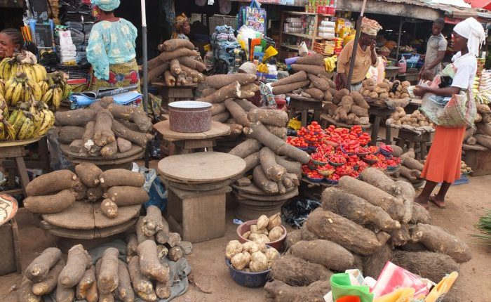 Thrive Agric leveraging technology to curb food insecurity post COVID-19