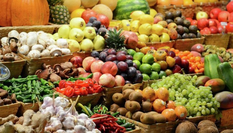 Agro exports
