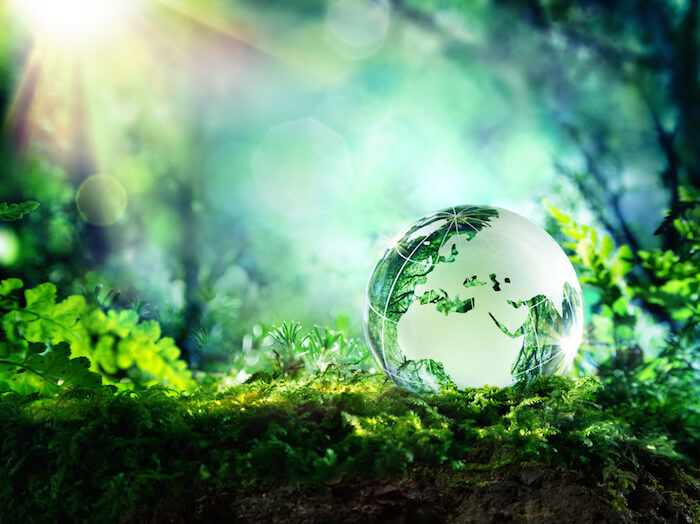 world environment day - photo #31